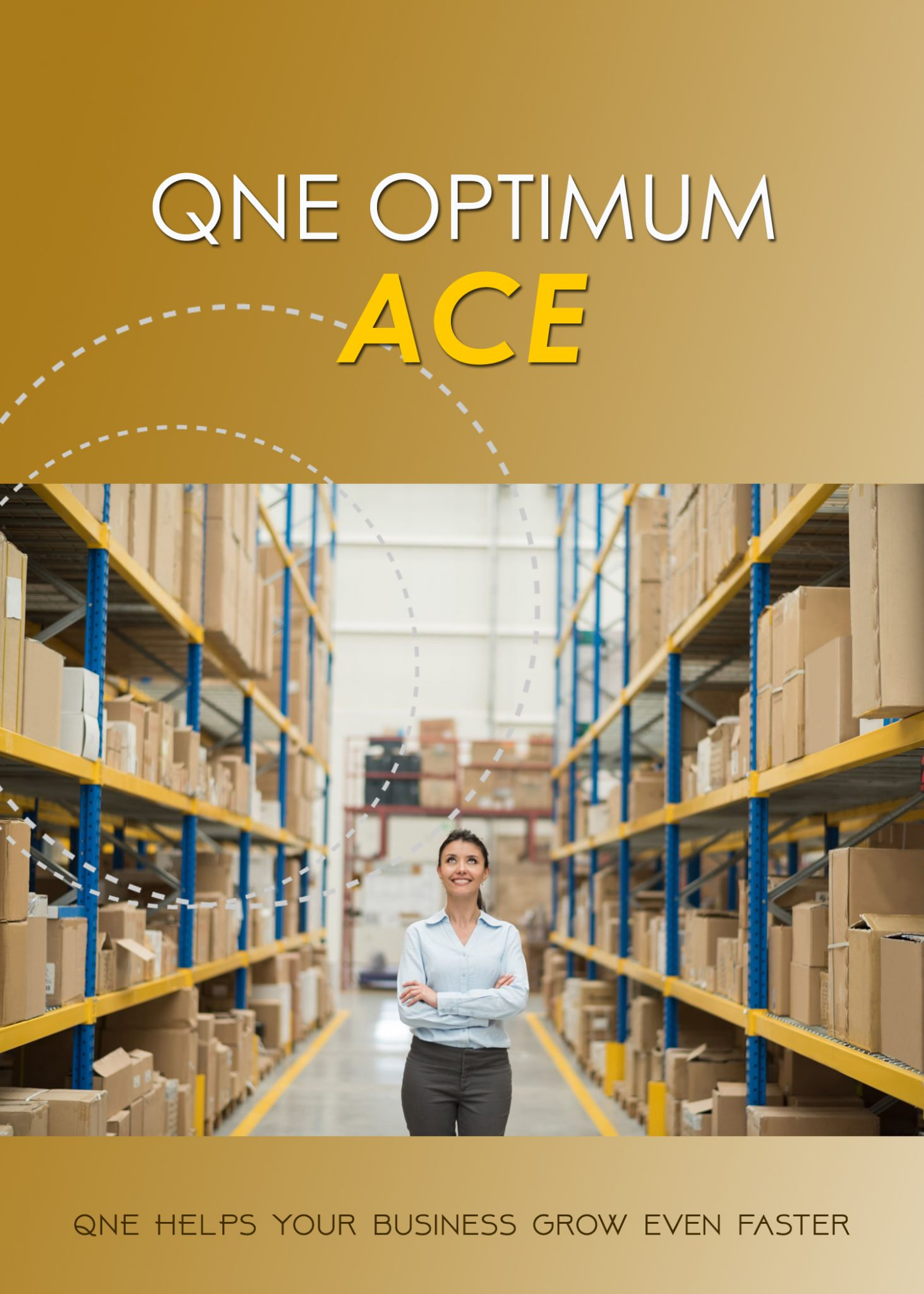 QNE Optimum Accounting System-Ace